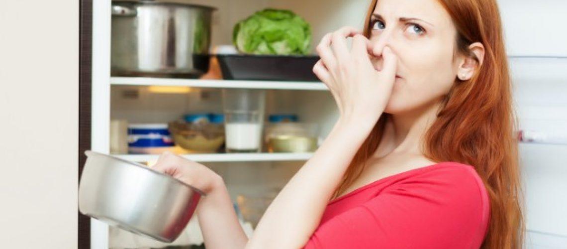 המקרר הפסיק לעבוד - מה עושים